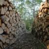 Wood Heat Gaining Even More Populartiy
