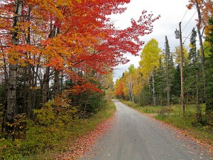 Autumn in Greenville Maine