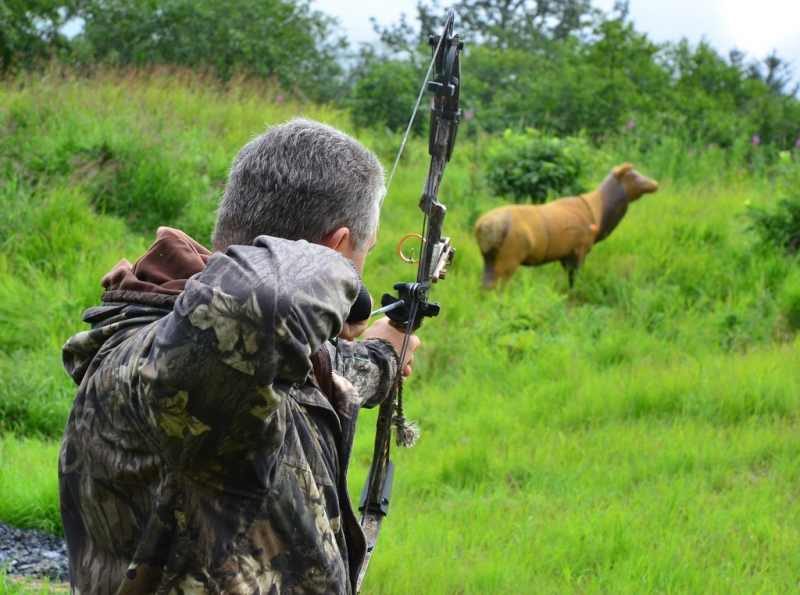 how to become a bow hunter essay What you don't know can hurt you in today's world, hunter's privileges are constantly being targeted, making it more important than ever to stick together and stay informed as a one recent example of information being spread was when the idaho fish and game proposed to close unit 39 to late season archery hunt.